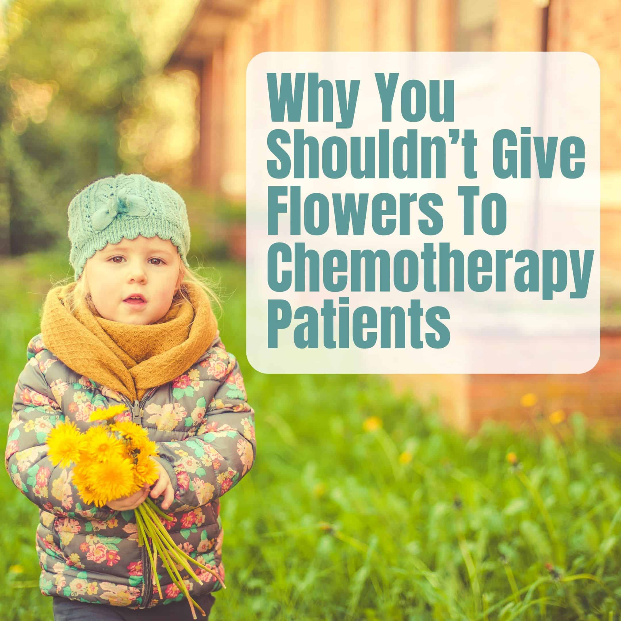 Don'T Say It With Flowers: Why You Shouldn't Buy Flowers For ChemotherapyPatients