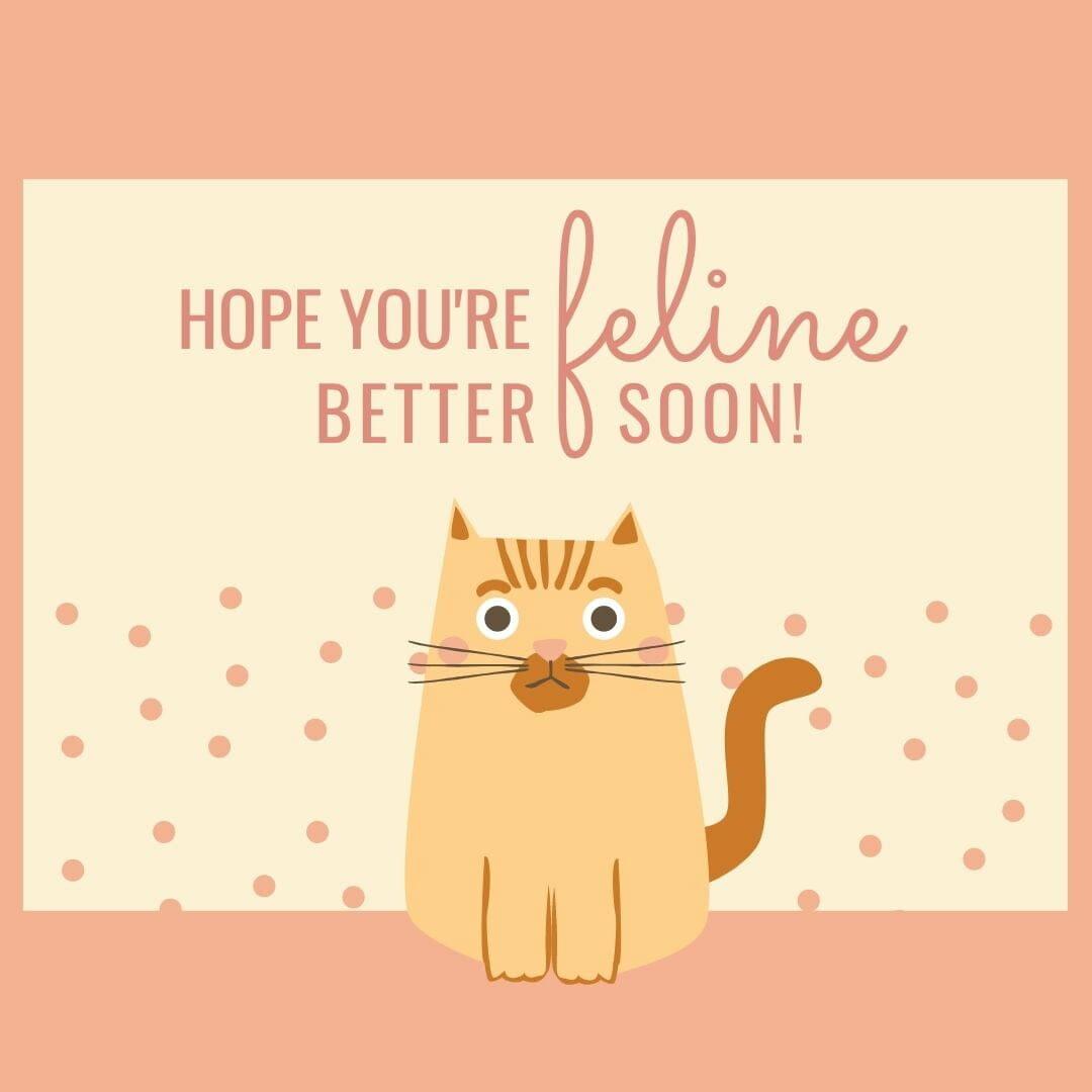 Hope Your Feline Better Soon
