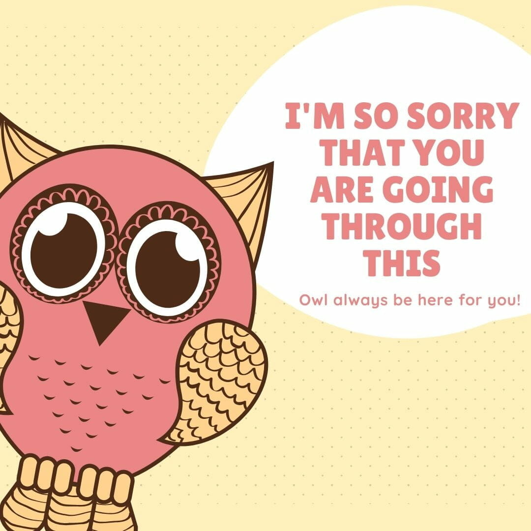 I Am Sorry That You Are Going Through His