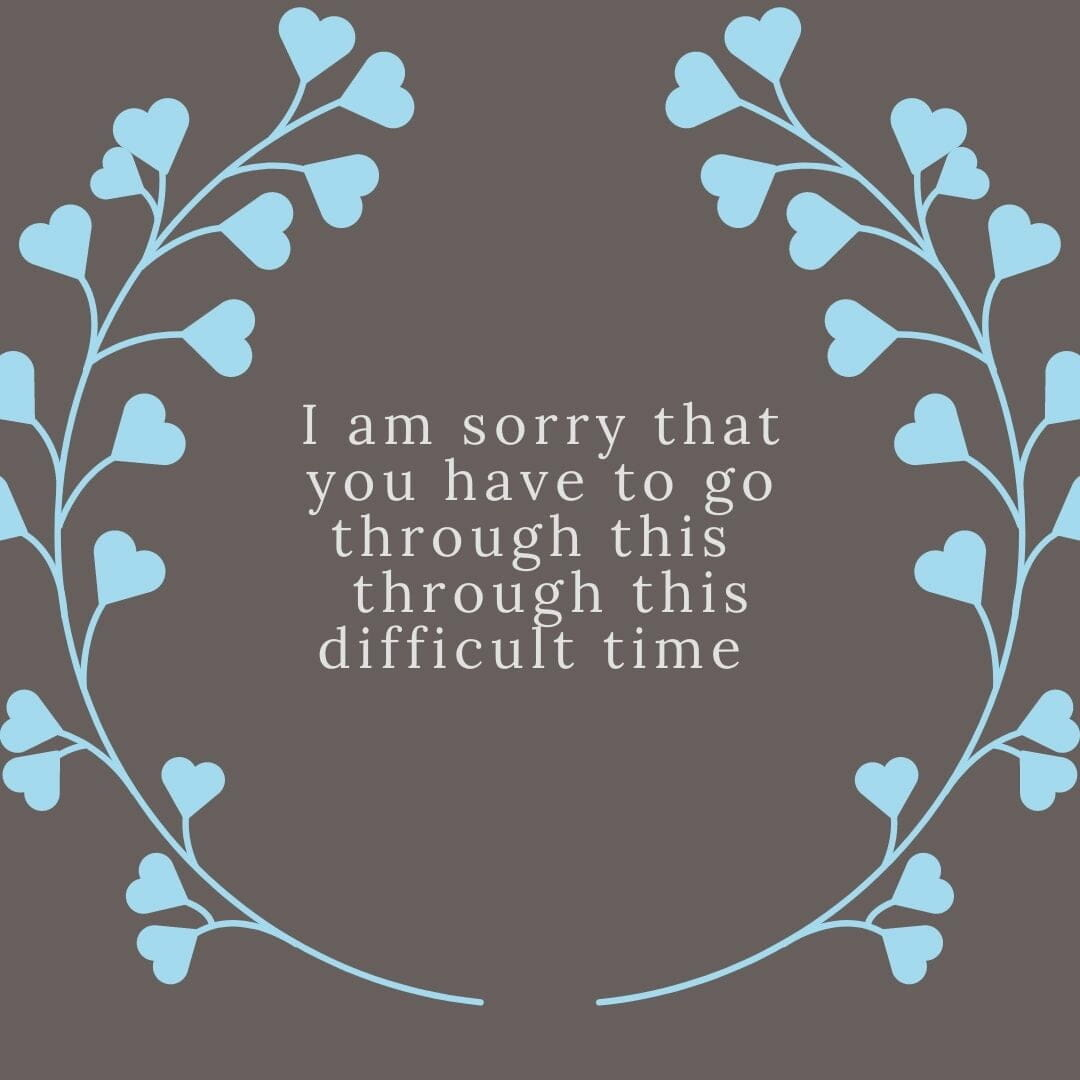 I Am Sorry That You Have To Go Through His