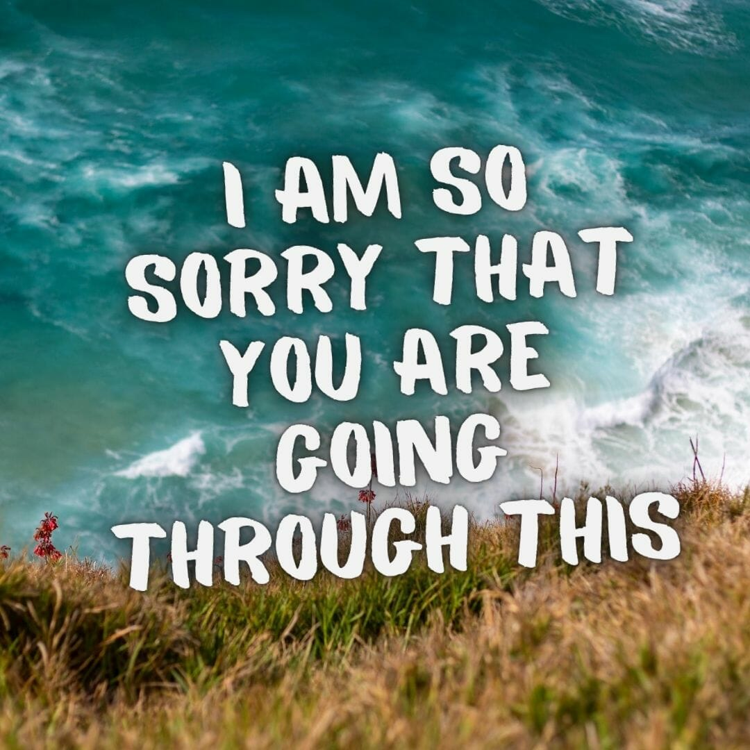 I Am So Sorry That You Are Going Through This